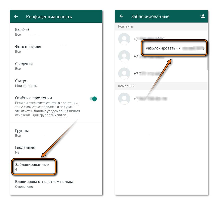 Разблокировка контакта в Whatsapp